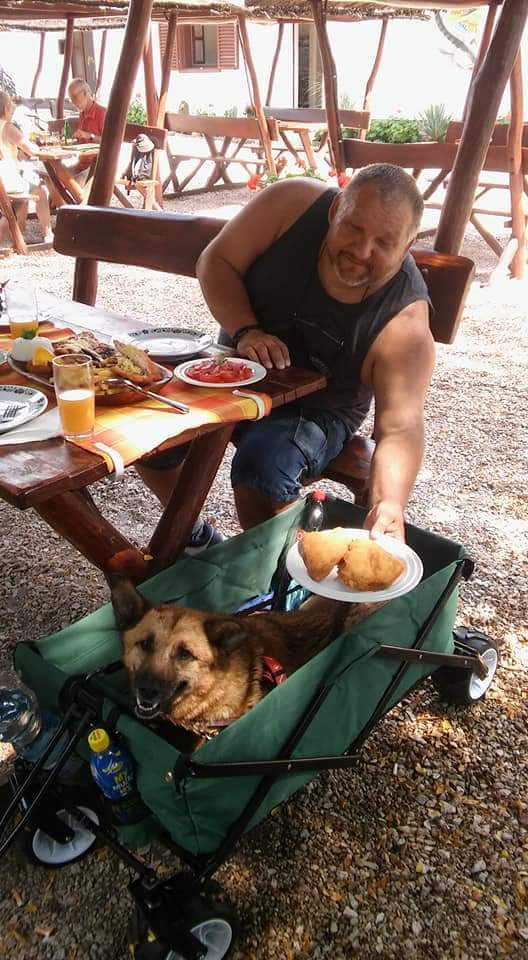 kutyabarat kutyabarát étterem