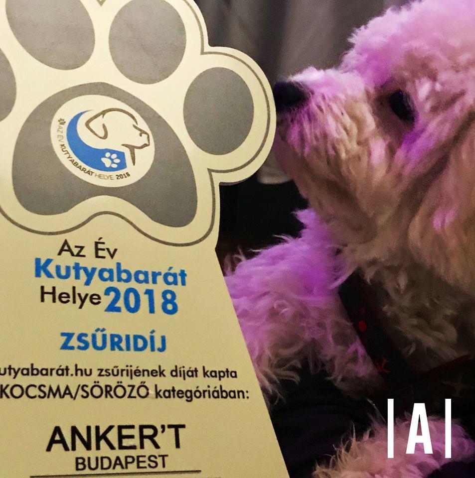 kutyabarát Ankert