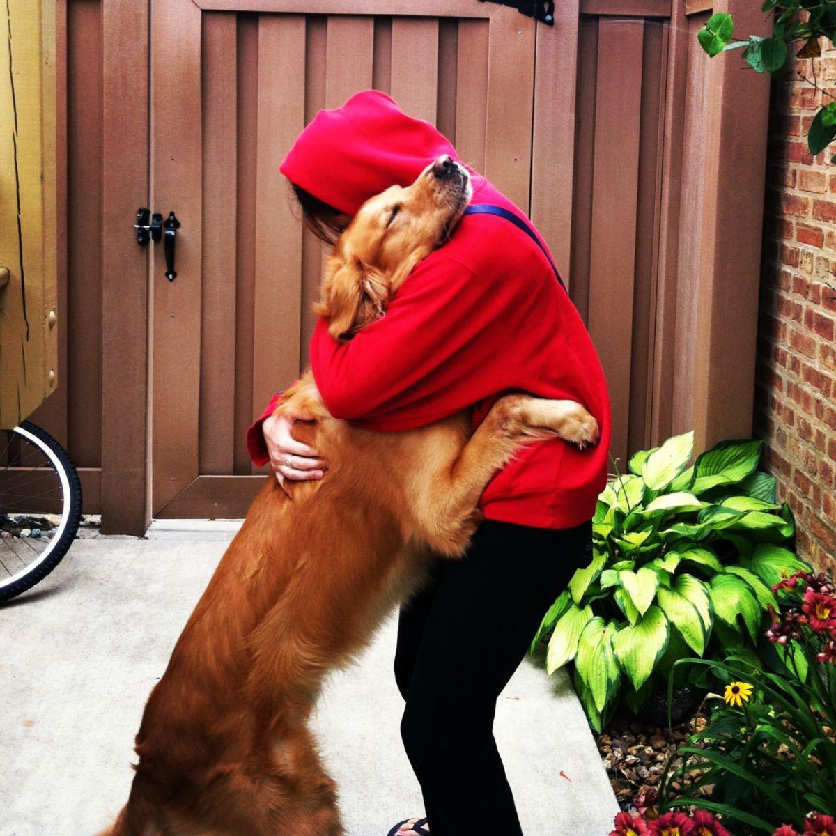 Kutyák, akik az adott pillanat érzését öleléssel tudták kifejezni
