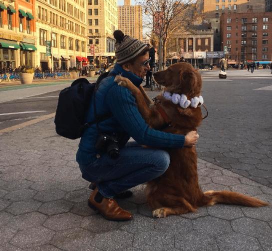 Kutyák, akik az adott pillanat érzését öleléssel tudták kifejezni - kutyaölelés