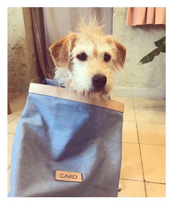 kutyabarat kutyabarát üzlet showroom
