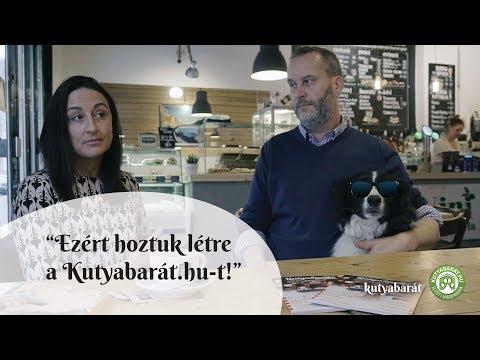 """""""Ezért hoztuk létre a Kutyabarát.hu-t!"""" - Interjú az alapítókkal"""