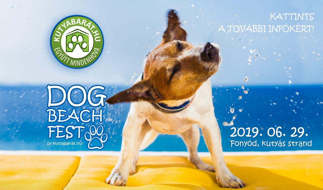 Dog BEach Fest
