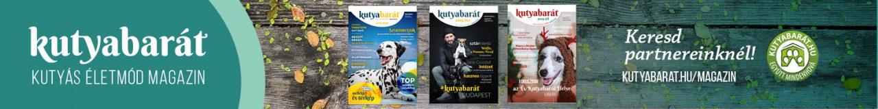 KB magazin 728×90