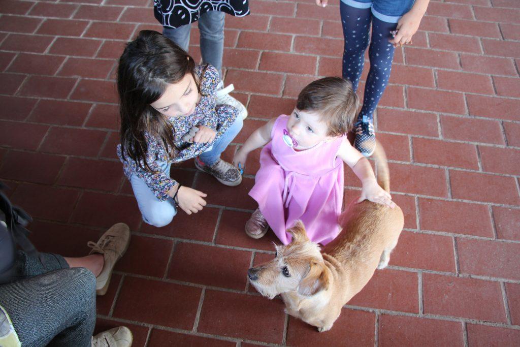 Tatyi kis barátai a kutyabarát várban