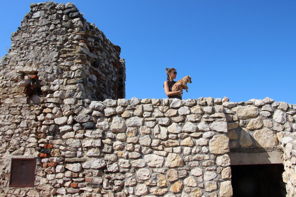 A várfalon