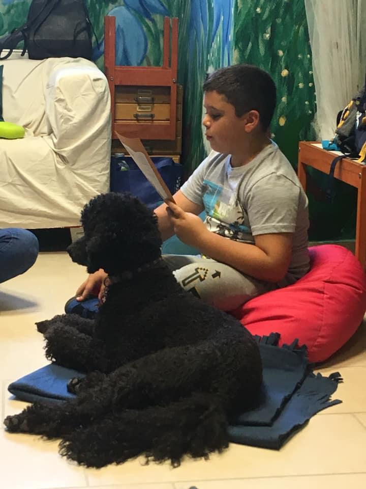 terápiás kutya