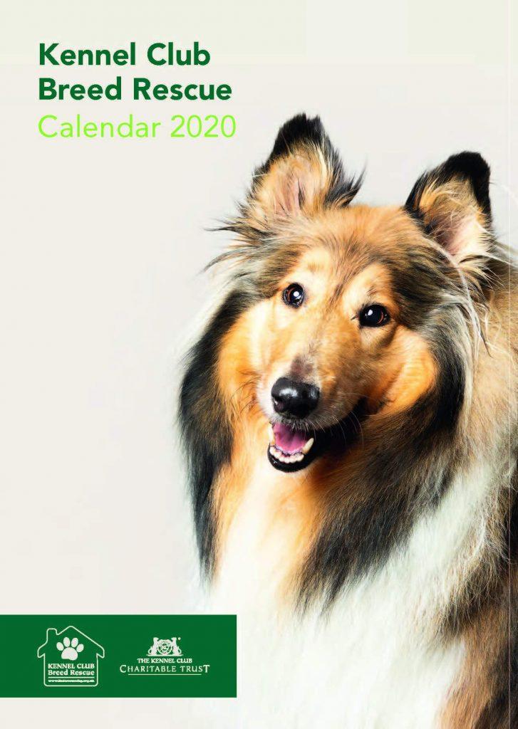 kutyás naptár