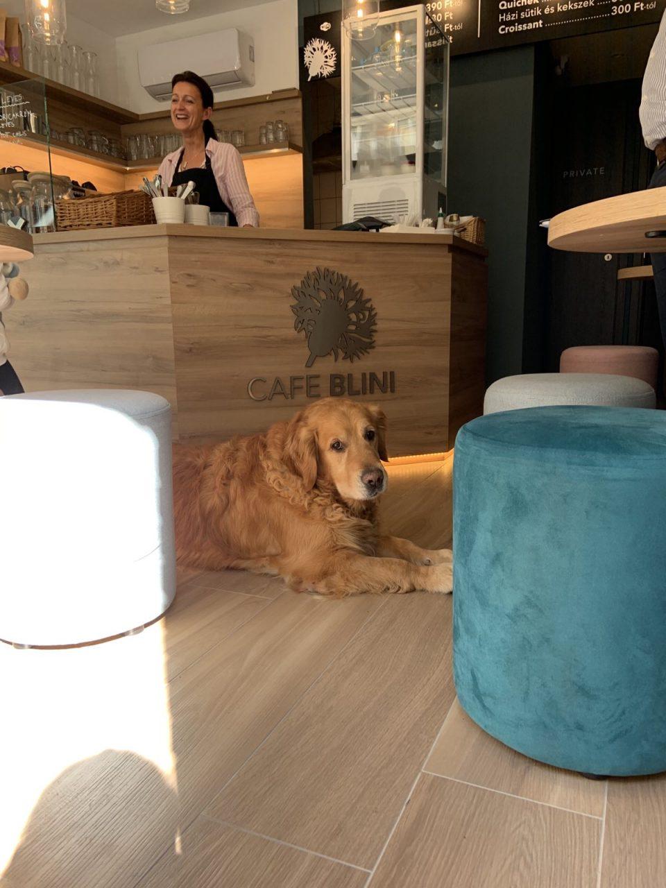 Cafe Blini