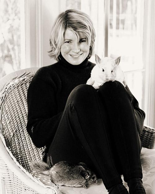 Martha Stewart csincsilla