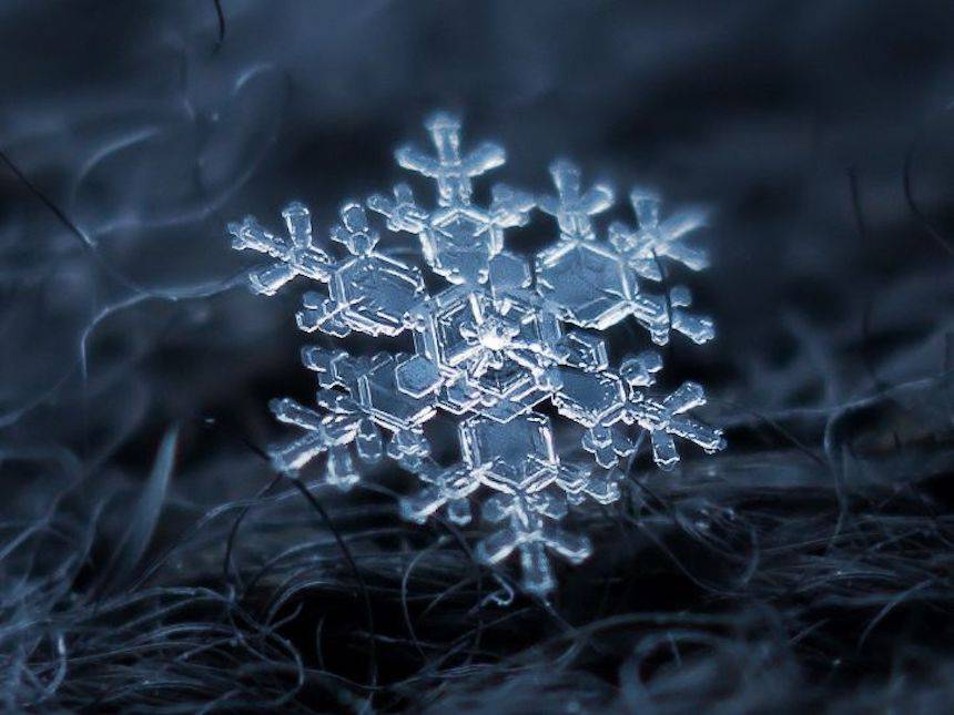alexey kijatov hópehely fotós
