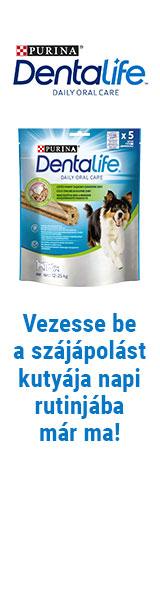 Nestlé Dentalife Január BAL