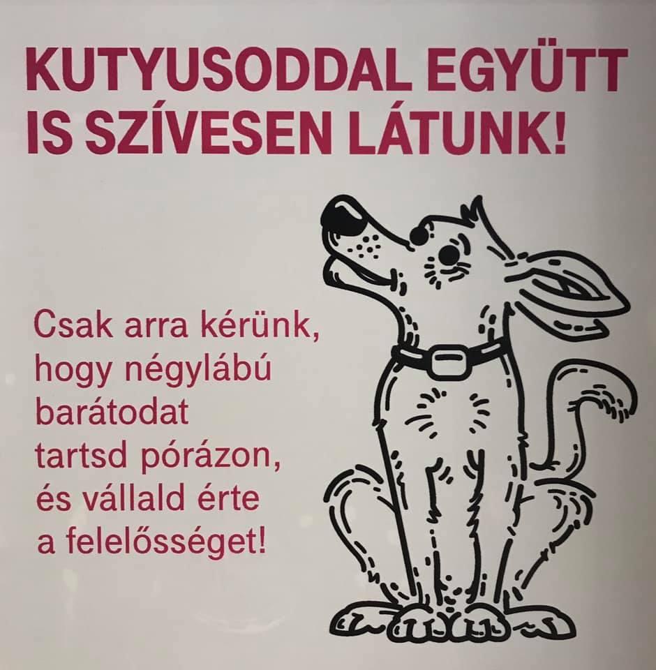kutyabarát