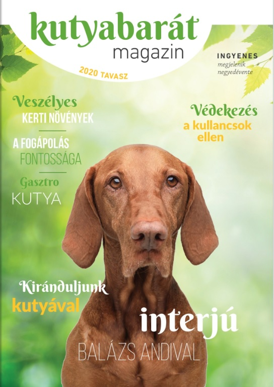 kutyabarát magazin 2020 tavasz