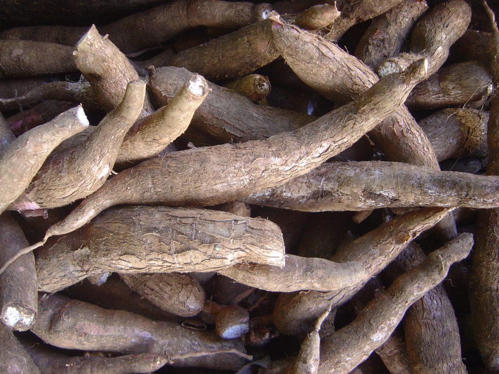 manióka grain free gabonamentes