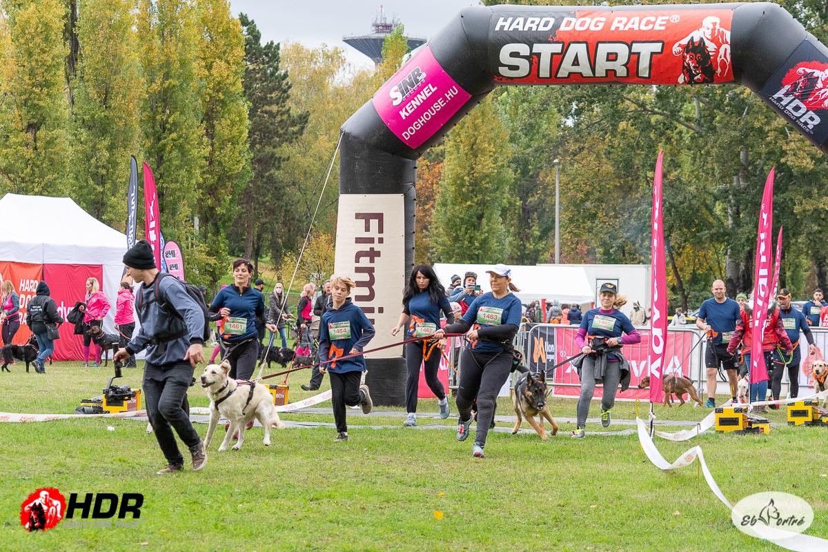 Hard dog race