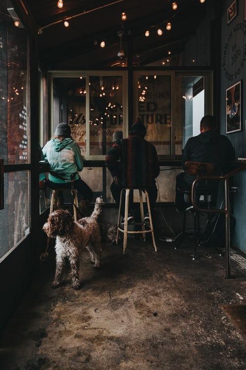 kutyabarát vendéglátóhely
