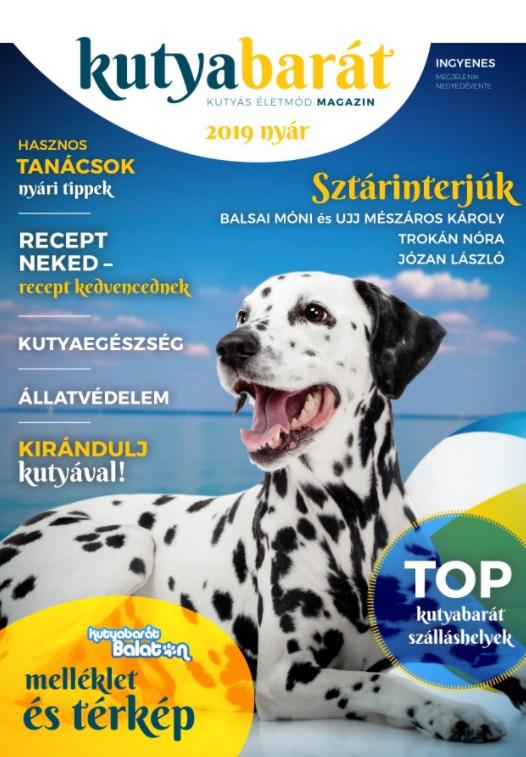 kutyabarát magazin nyár 2019
