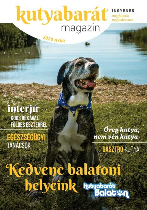 kutyabarát magazin nyár 2020