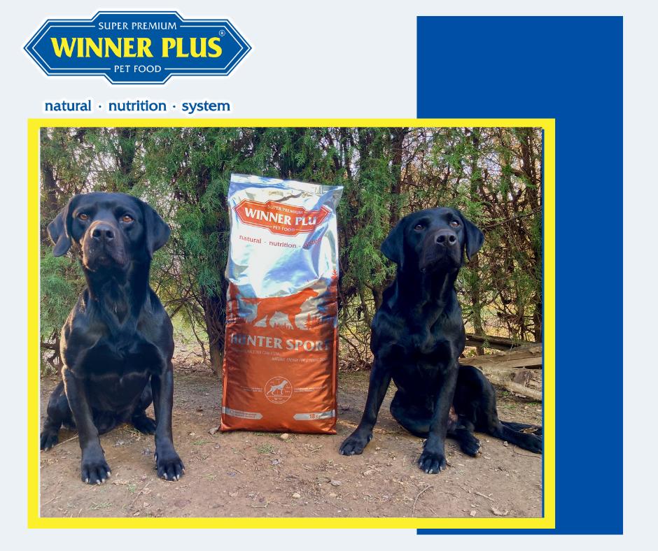 kutyatáp winner plus